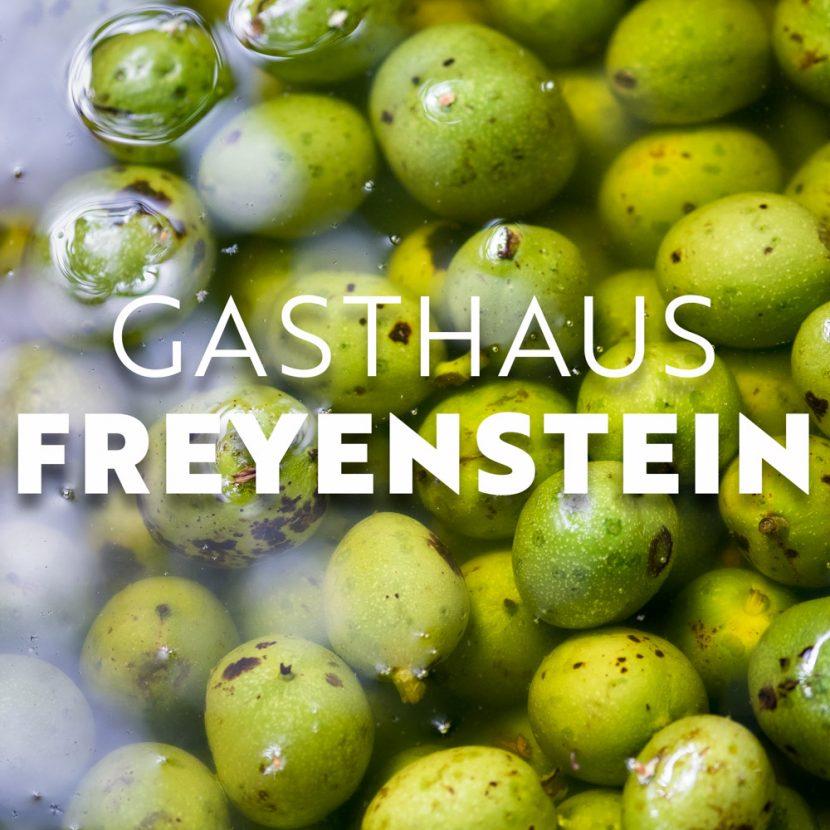 Freyenstein