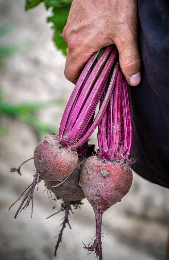 30-Minuten Gemüseküche